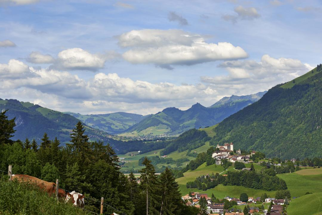 You're en route for the Swiss dream! Despite being a popular holiday destination, the region of La Gruyère has lost none of its natural beauty. Its lush green landscape, clear lake, authentic character, mountains and delicious local products are the perfect memory of Switzerland to take home with you.
