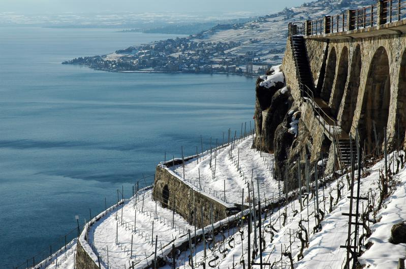 UNESCO-listed Lavaux vineyard terraces ©Alain Jarne