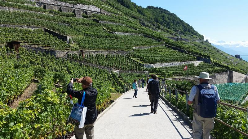 UNESCO-listed Lavaux vineyard terraces ©OTV
