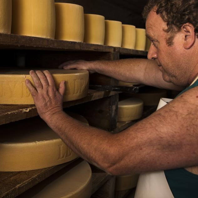 Visit of an alpine dairy - Cheese production