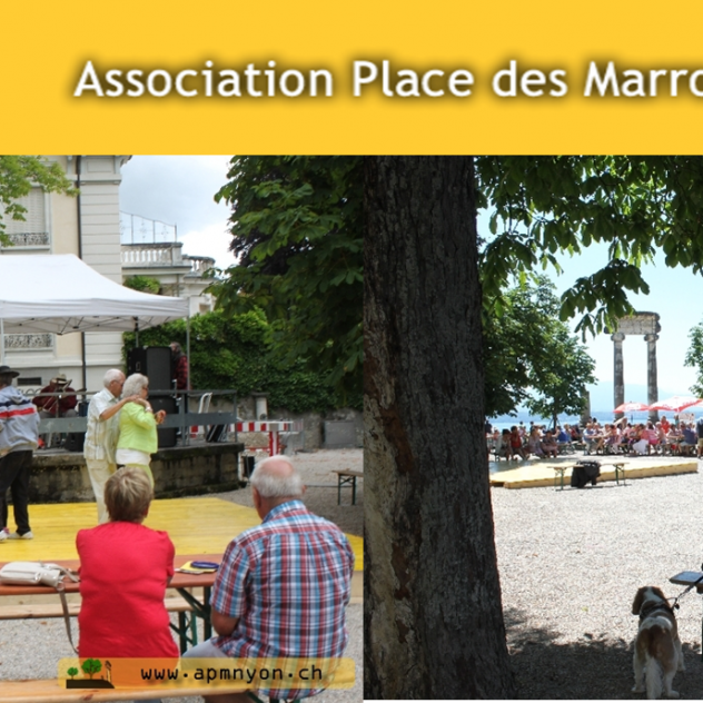 "Free concerts Ass.""Place des Marronniers"")"