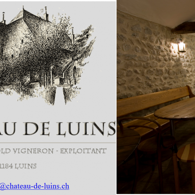 Tuesday's aperitif at the Castle in Luins