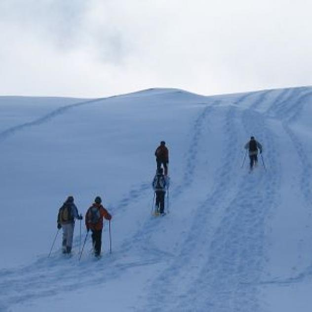 Destination Montagne, Hiking, snowshoeing, nordic walking