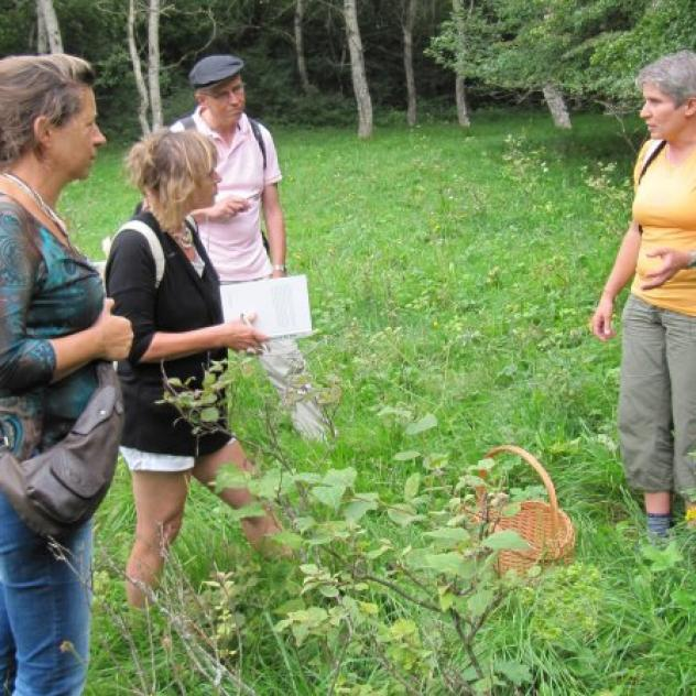 Folrando, guided hikes & snowshoe to discover the fauna and flora