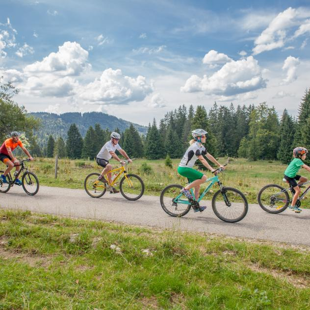 Rent an E-bike or a Mountain bike - St-Cergue
