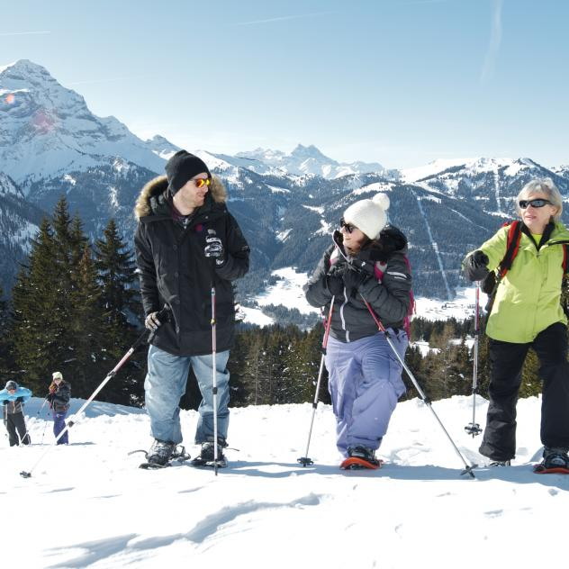 Snow-shoeing - Les Diablerets