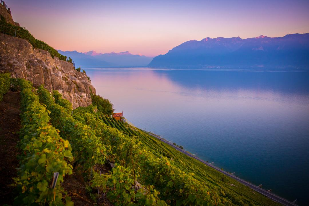 Lavaux terraced vineyards, UNESCO