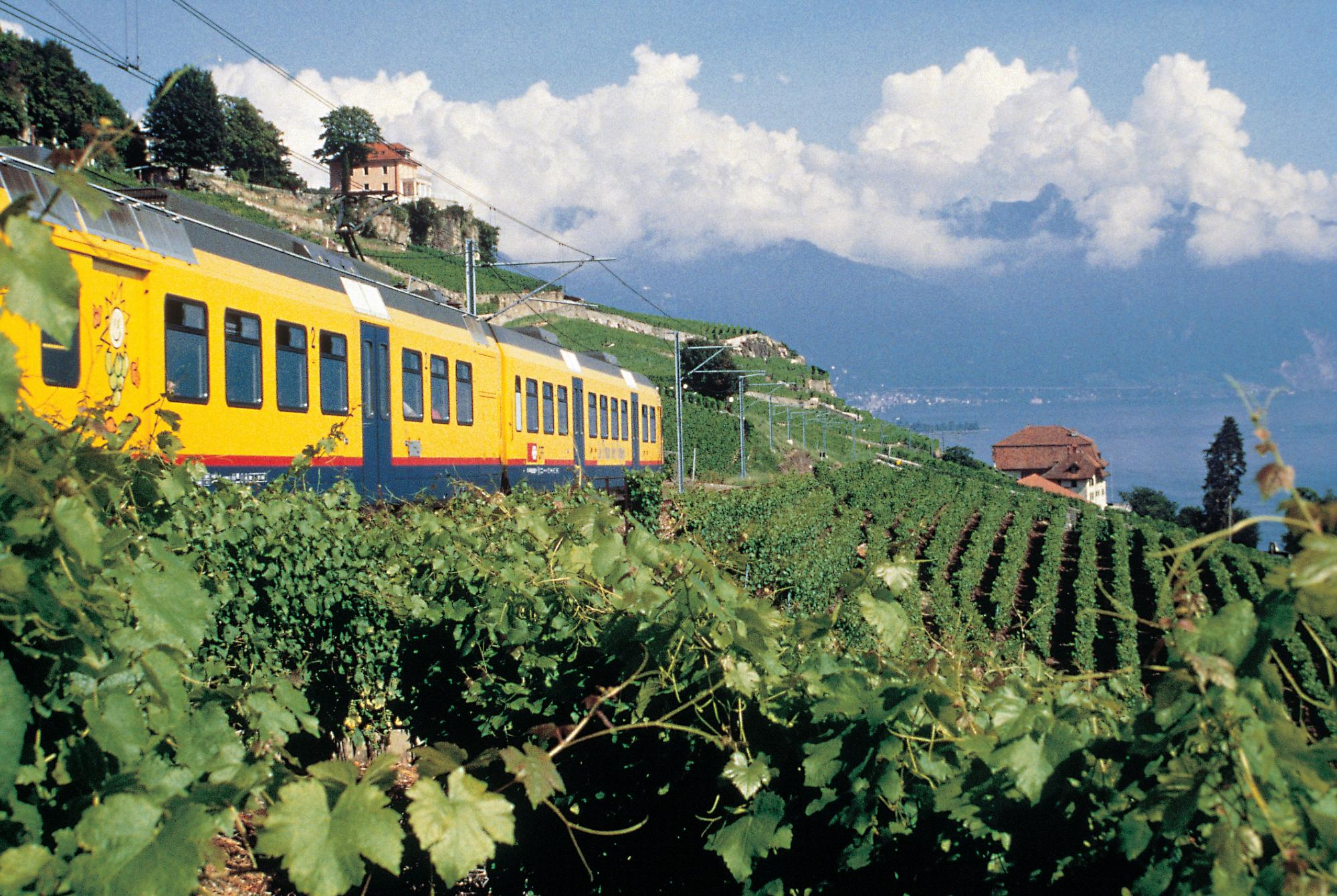 Wine Train Vevey - Puidoux