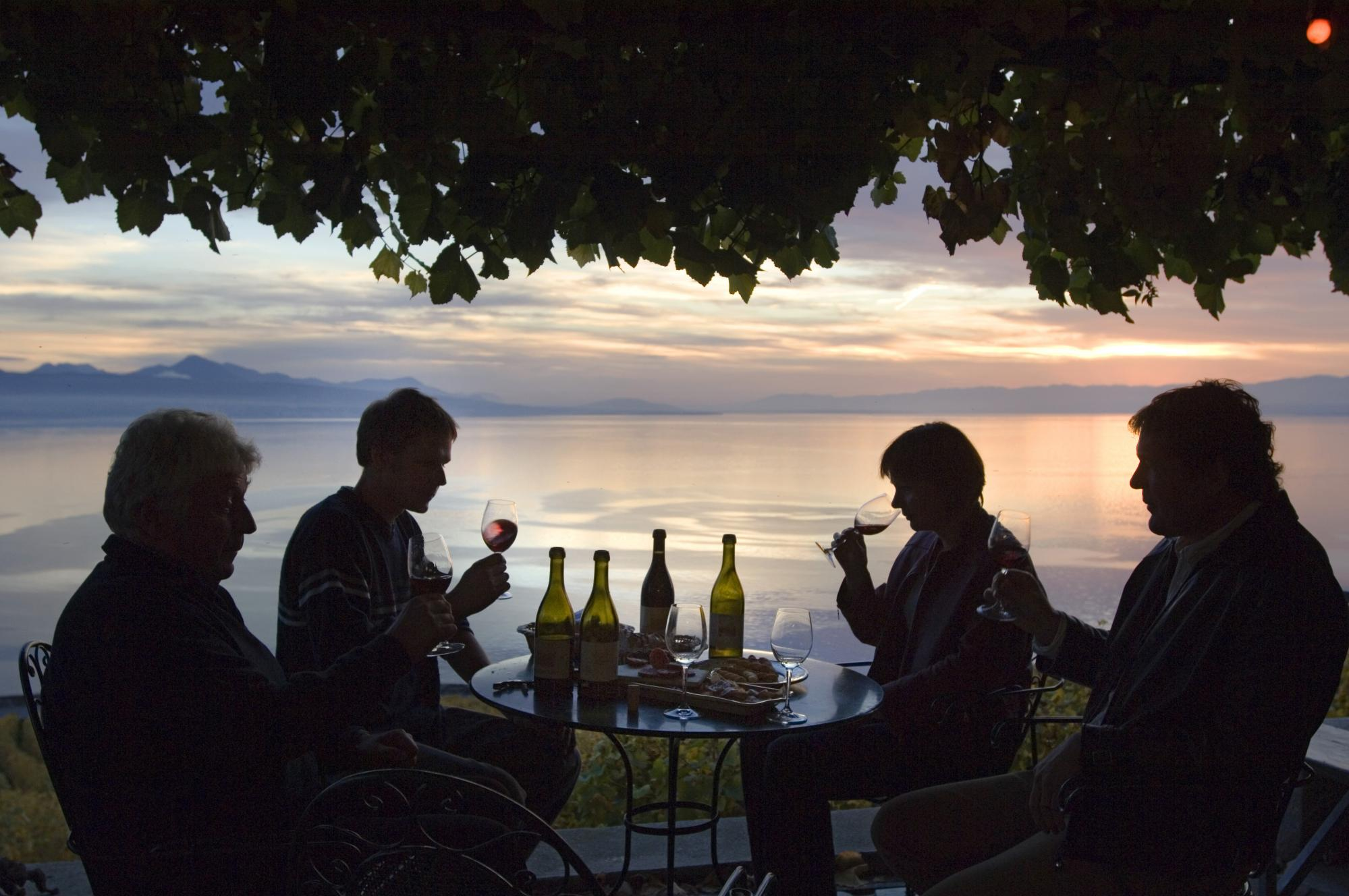 Wine tasting in Lavaux