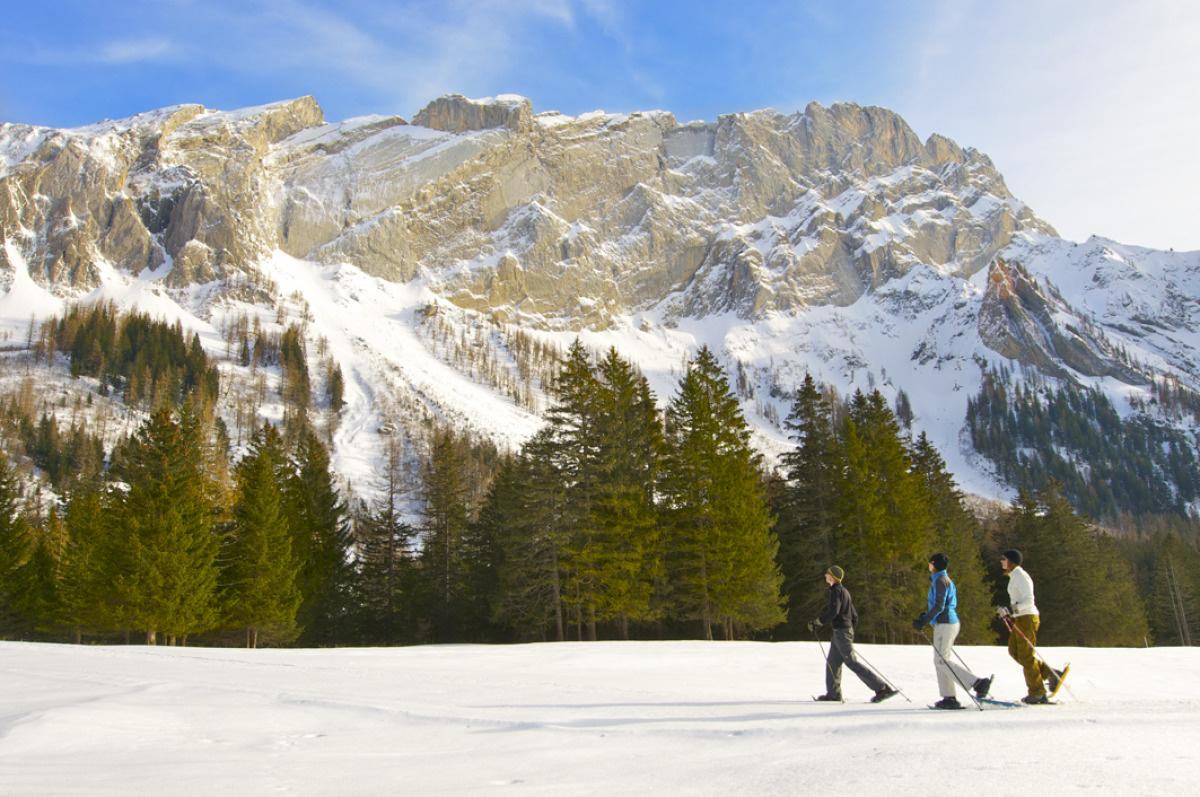 Snow-shoeing - Villars-Gryon
