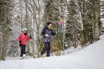 Snowshoes and fondue - package