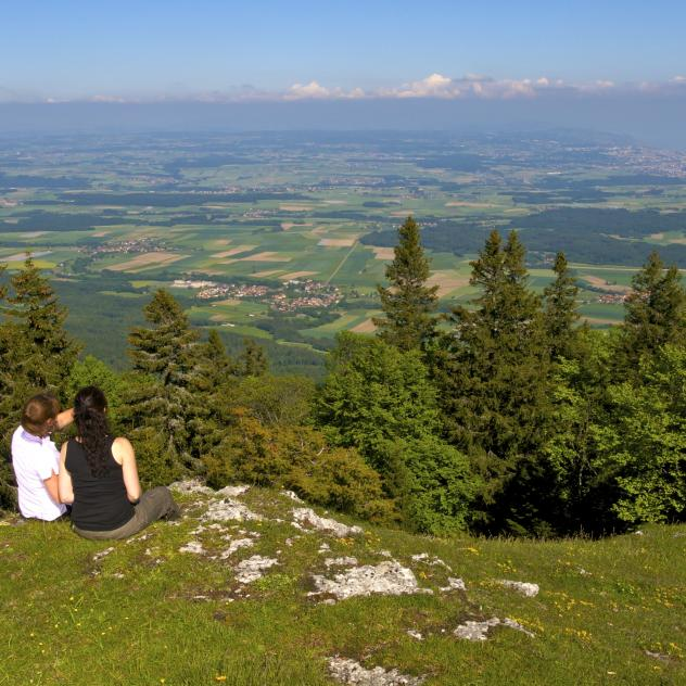 At the top of the Swiss Jura - 130