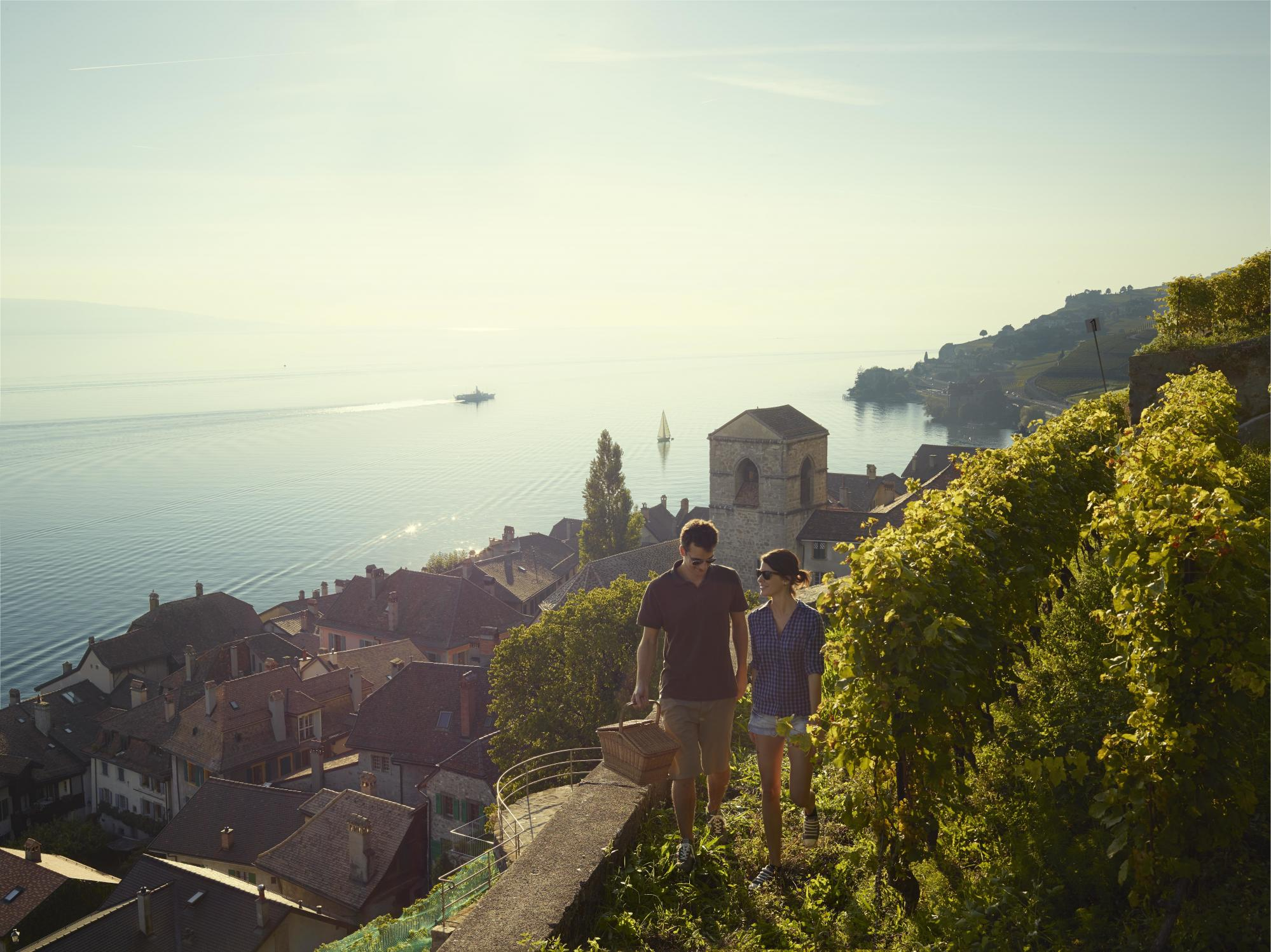 Walks through the Lavaux vineyard