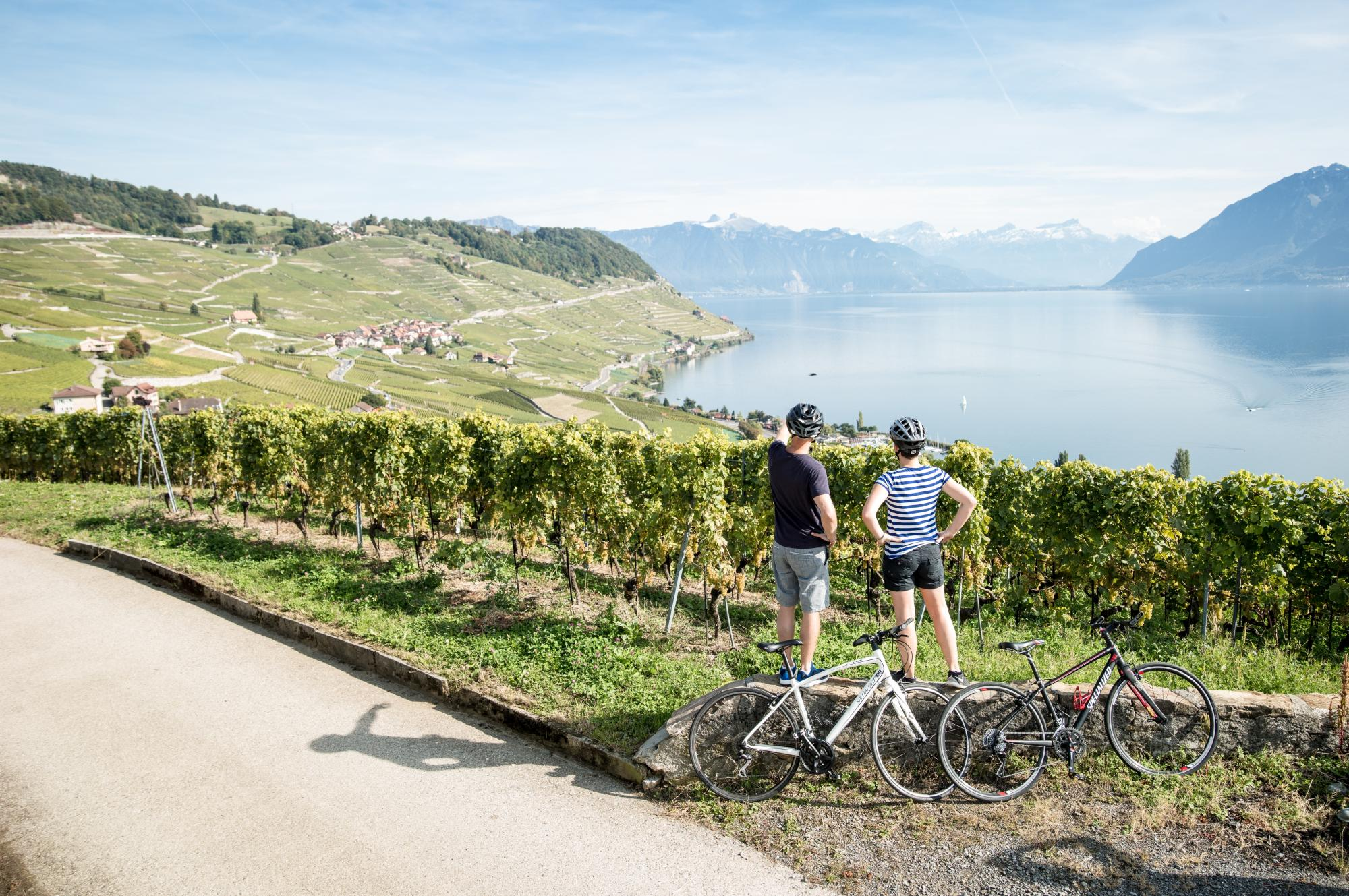 Biking directions in Lavaux