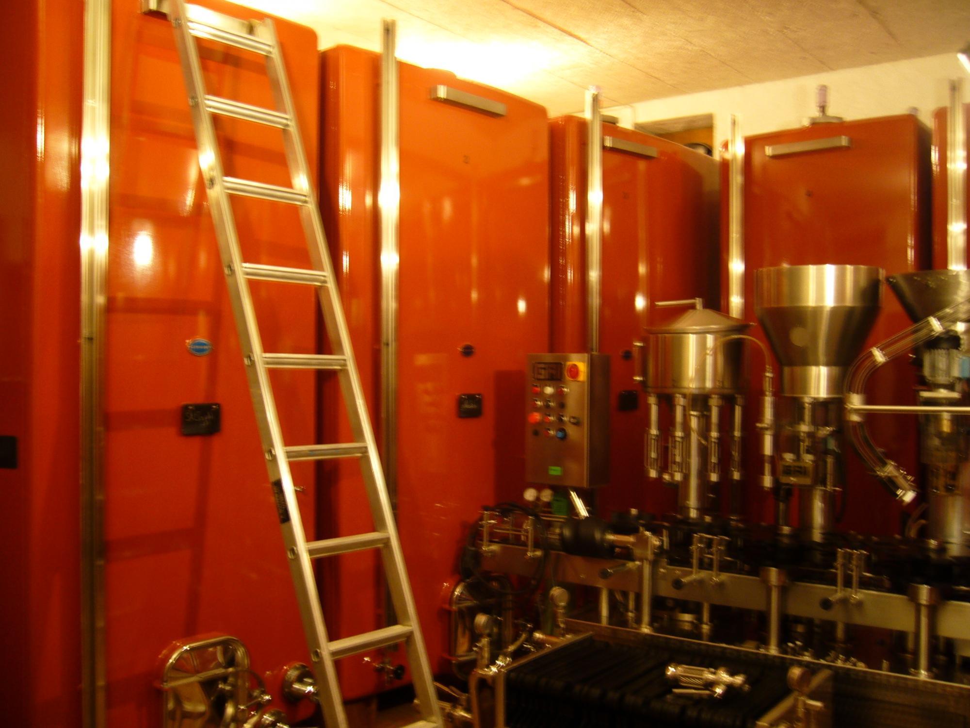 Morel Vins - Genferseegebiet (Schweiz)