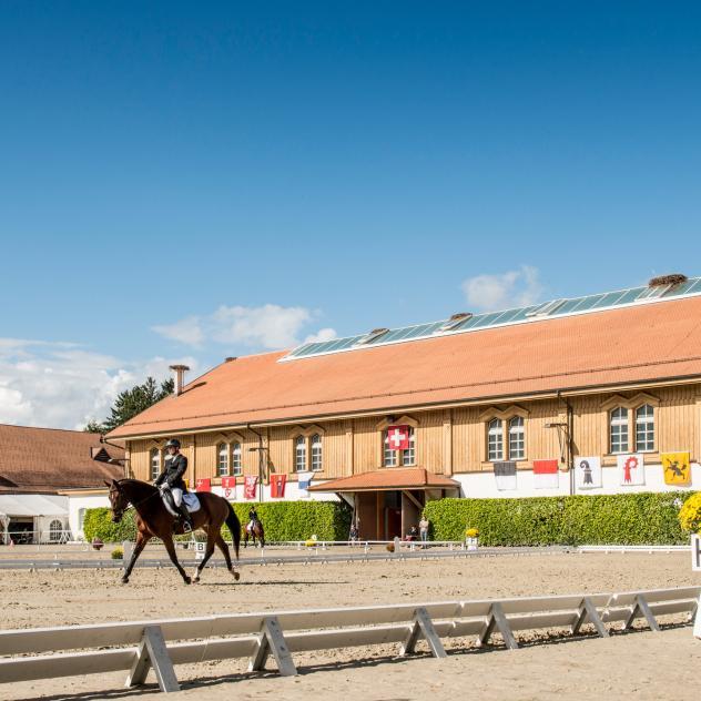 Capital of Horses
