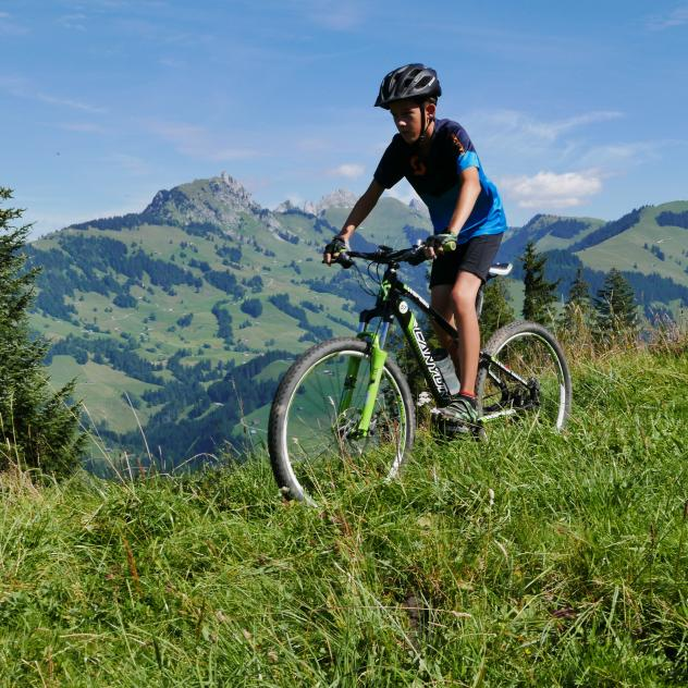 Mountain bike - Tour de la Gruyère - Day 3