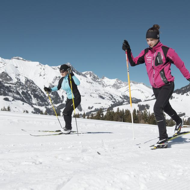 Cross-country skiing - Pays-d'Enhaut
