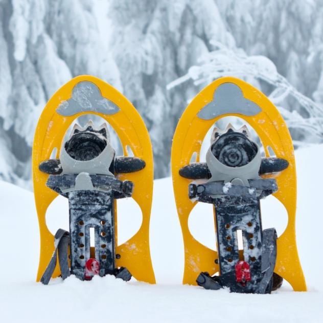 Snowshoes rental