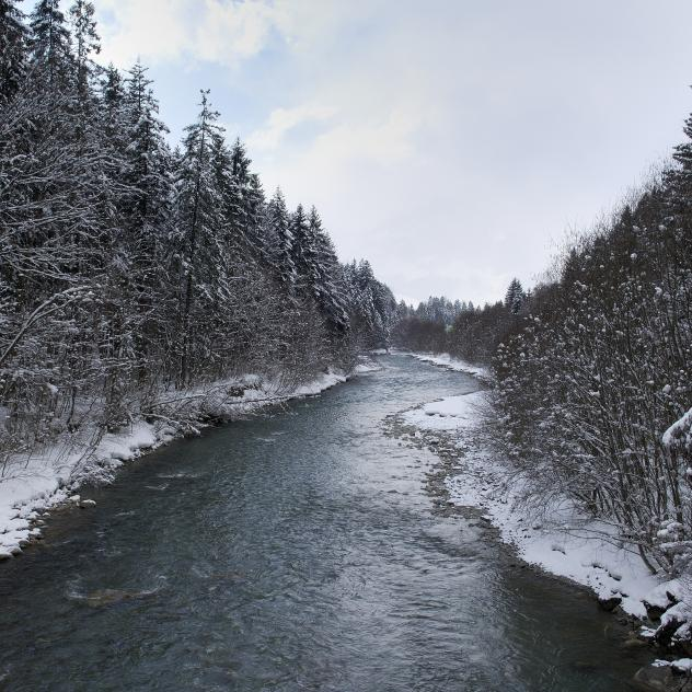Winter walk | Rougemont - Saanen
