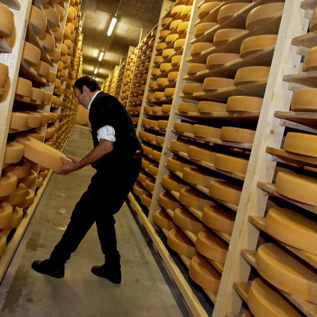Visit of the cheese cellars