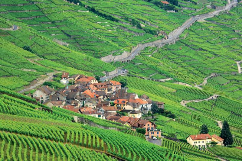 UNESCO-listed Lavaux vineyard terraces - © Samuel Bitton / samuelbitton.com