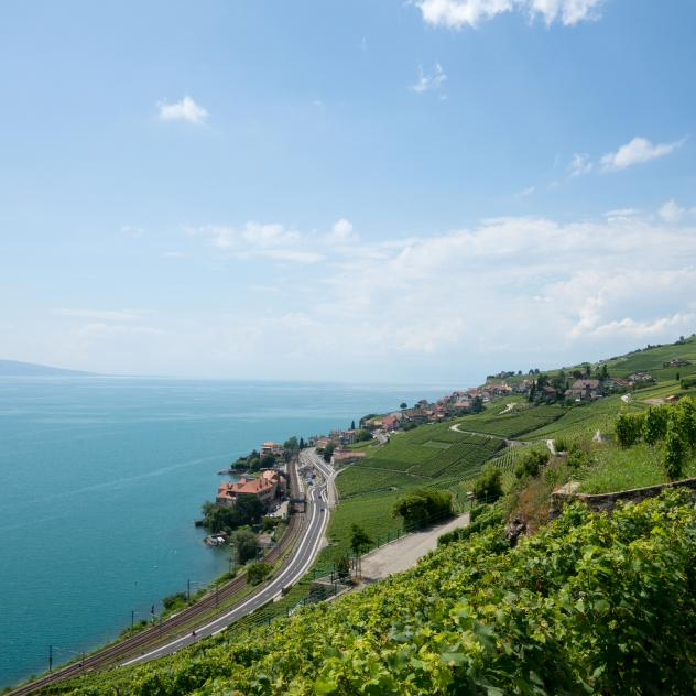 The work of a wine producer in Lavaux