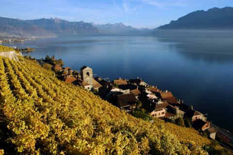 "St-Saphorin, member of ""The Most Beautiful Villages in Switzerland"""
