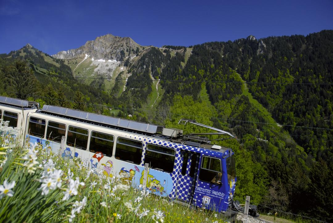 the cog railway montreux