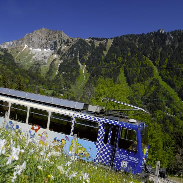 The cog railway Montreux - Rochers-de-Naye