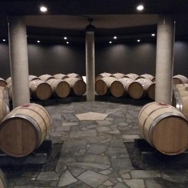 Experience - Immersion in the barrel cellar