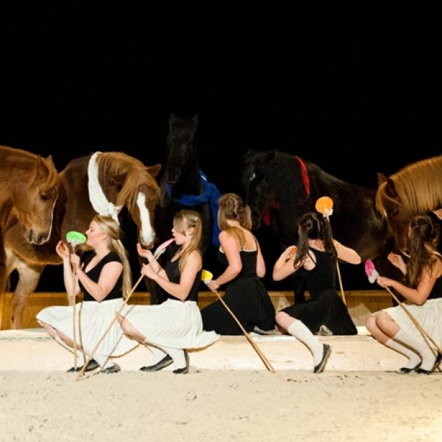 Equestrian circus school & workshop  Shanju - Gimel