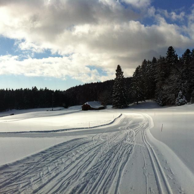 Cross-country skiing in St-Cergue & St-George