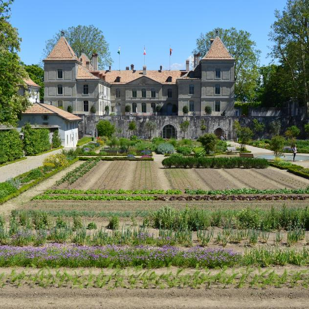 Historic kitchen garden - Château de Prangins