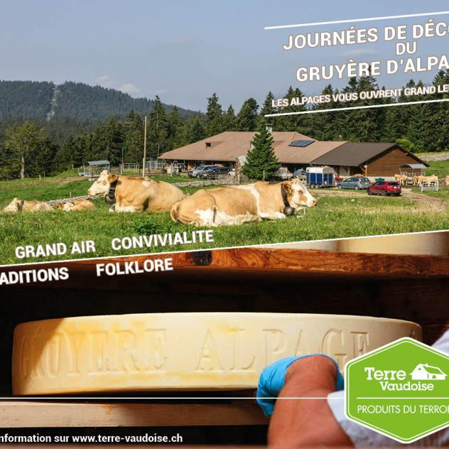 Discover cheese making at La Givrine