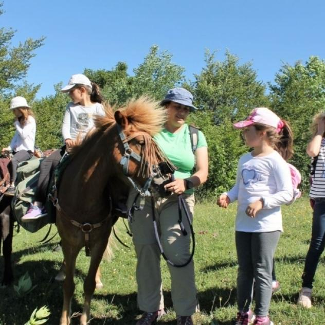 Via Naturae - hikes with horses