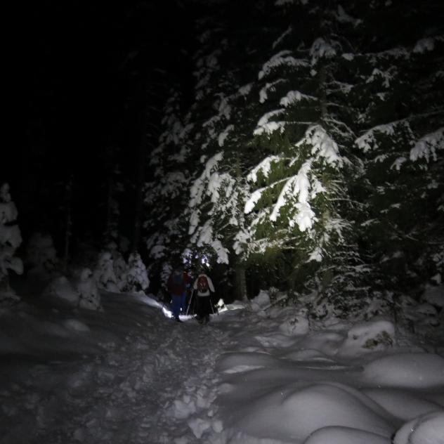 Snowshoeing in the night