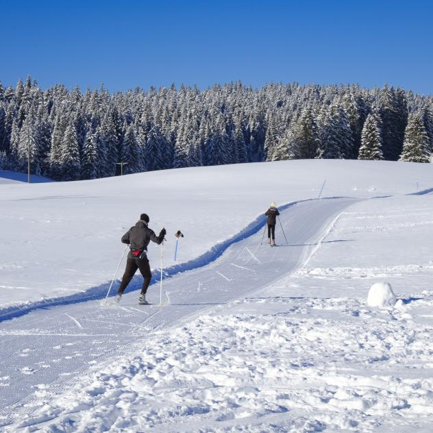 Cross-country skiing trails