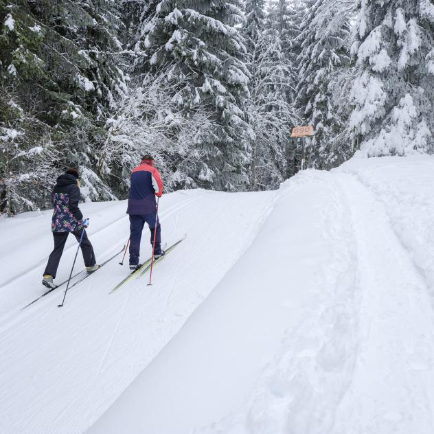 Cross-country skiing in St-Cergue, La Givrine and La Cure