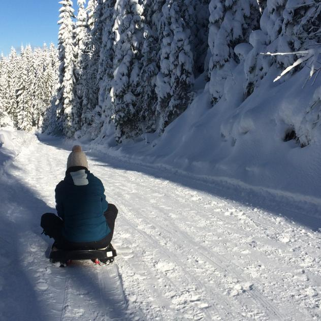 Sled runs in the Vallée de Joux
