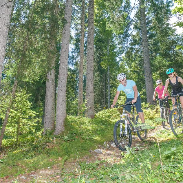Cycling & Mountainbiking in the Vallée de Joux
