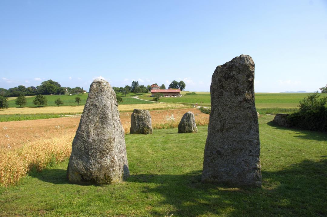 The menhirs of the grandson region yverdon les bains for Location yverdon suisse
