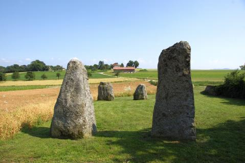 The menhirs of the Grandson region