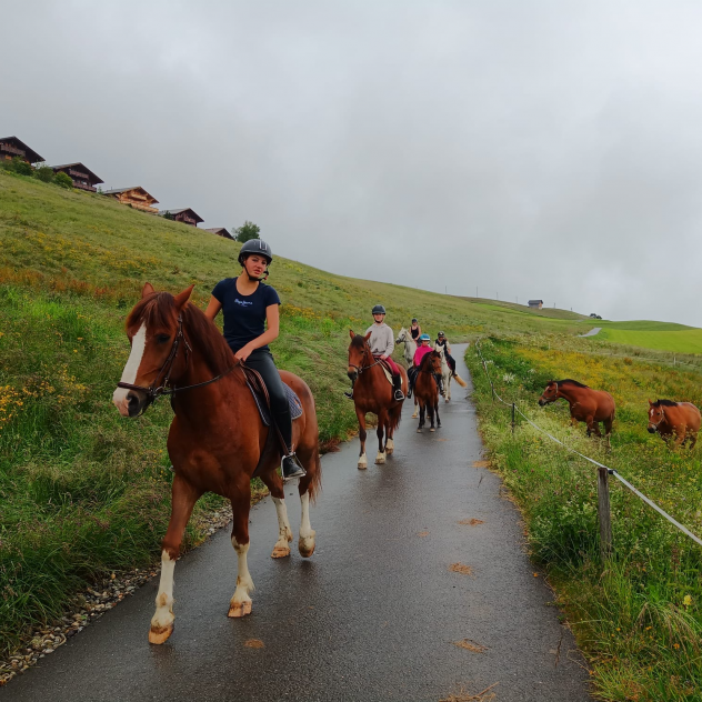 Leysin Riding Stables