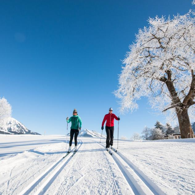 Cross-Country Skiing - Leysin