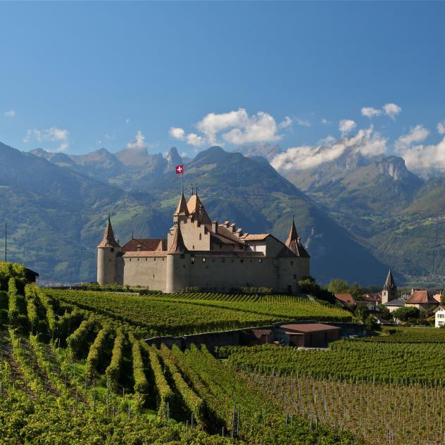 Château d'Aigle Vines, Wine and Wine Labels Museum