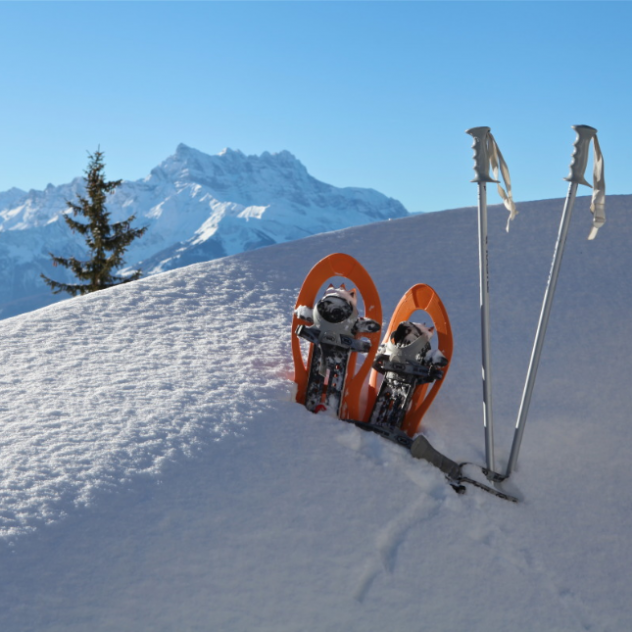 Snowshoes with Dents-du-Midi - winter - Leysin
