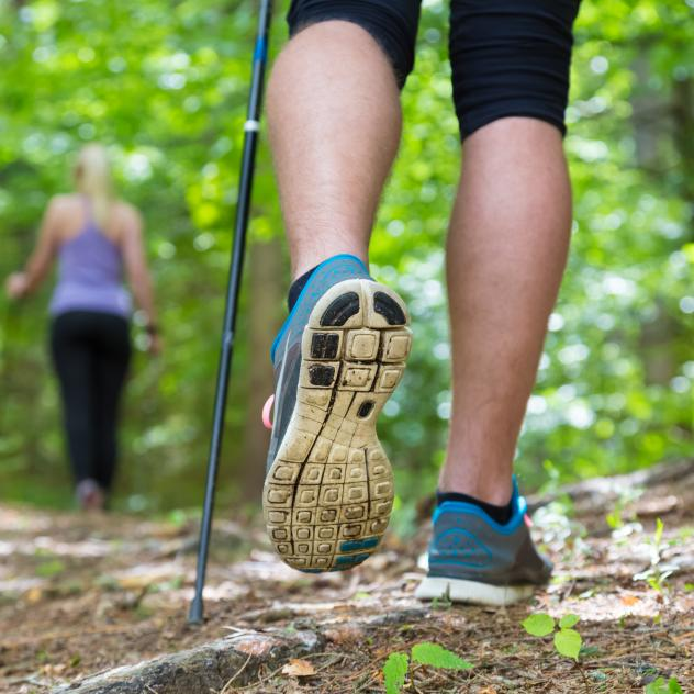 Nordic walking - Les Mosses