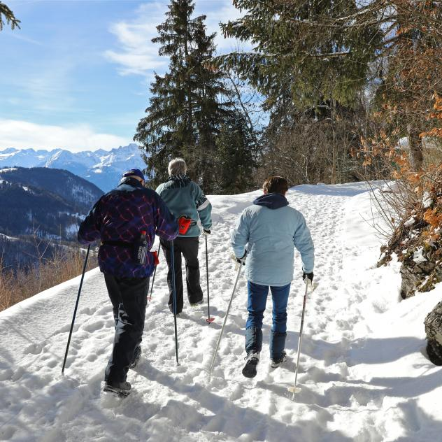 Leysin Walking Trail - Winter