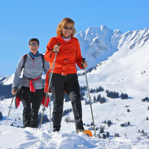 Snow-shoeing - Col des Mosses